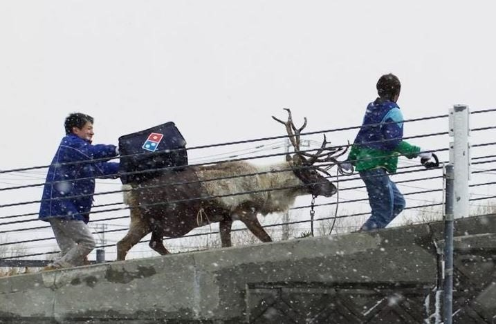 reindeer-dominos-delivery