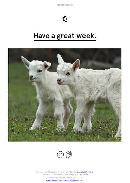 glossier goats email