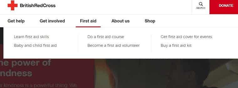british red cross website