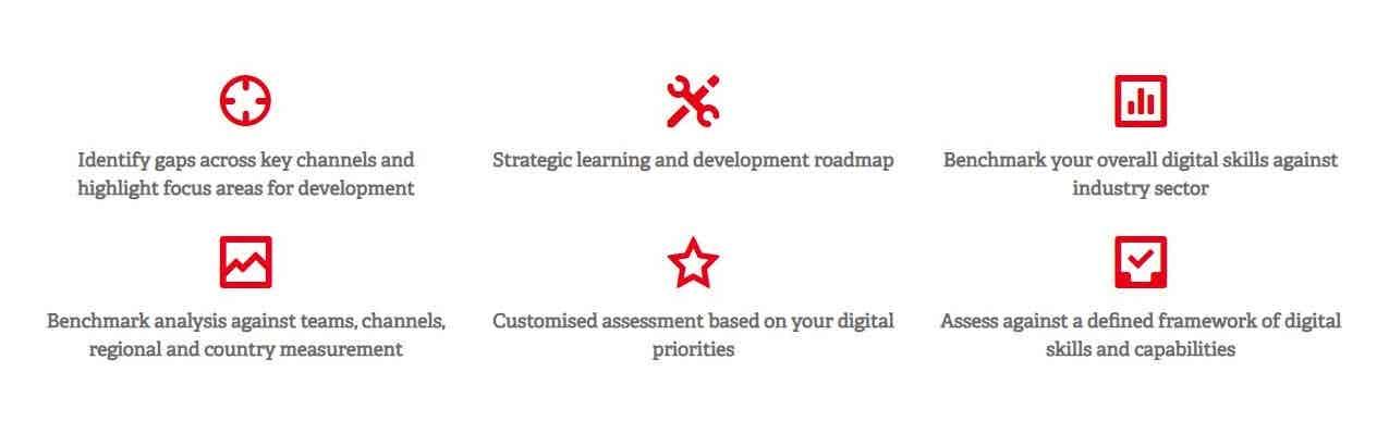 Digital Skills Assessment