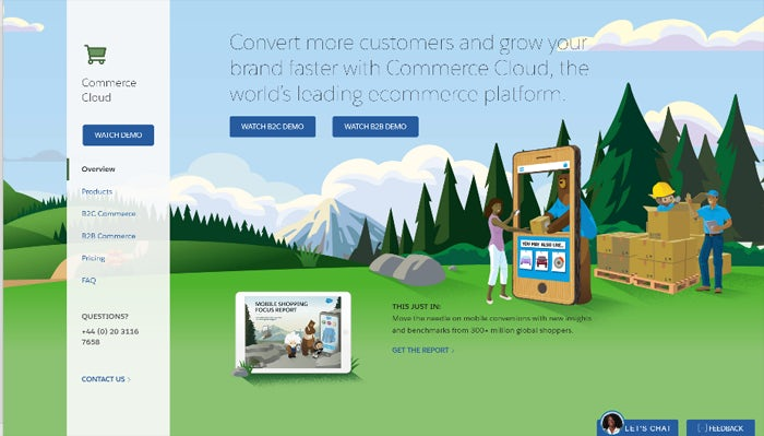 salesforce-screenshot-1
