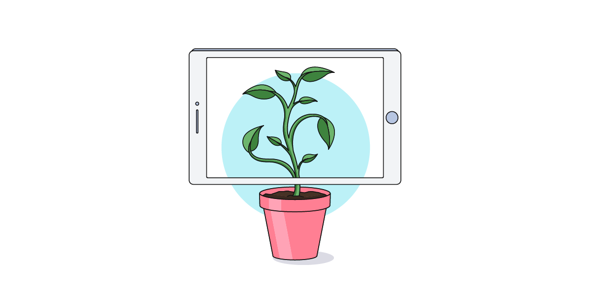 Digital transformation graphic depicting a plant growing onto a tablet screen