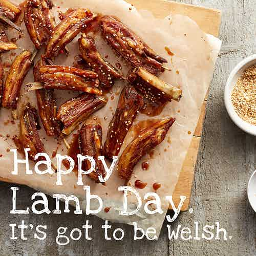 lamb day four communications welsh lamb ad