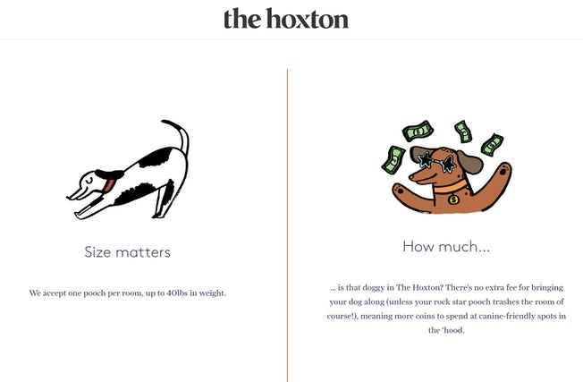 the hoxton dog
